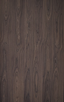 Walnut crown veneer